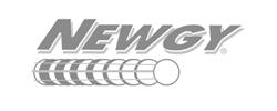 Newgy logo